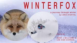 WINTERFOX: A Journey Through Winter