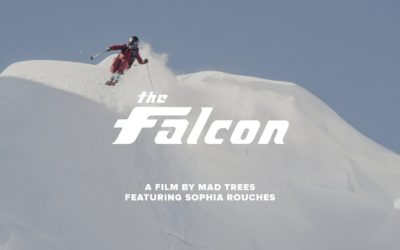 Falcon – Falcon the Van