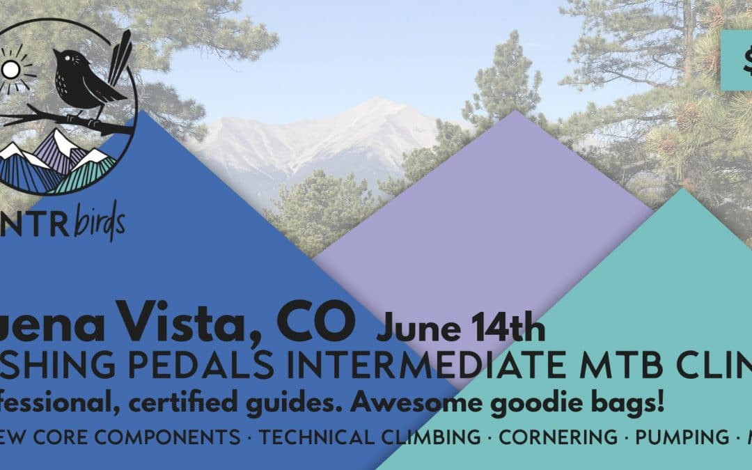 Pushing Pedals MTB Intermediate Clinic – Buena Vista