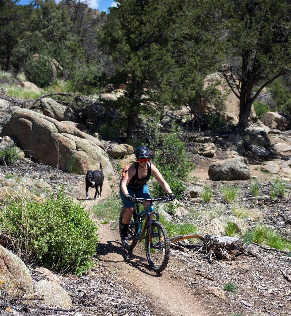 Riding mountain bikes with your dog.